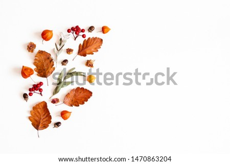 Autumn composition. Physalis flowers, eucalyptus leaves, rowan berries on white background. Autumn, fall, thanksgiving day concept. Flat lay, top view, copy space #1470863204