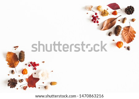 Autumn composition. Dried leaves, flowers, berries on white background. Autumn, fall, thanksgiving day concept. Flat lay, top view, copy space #1470863216