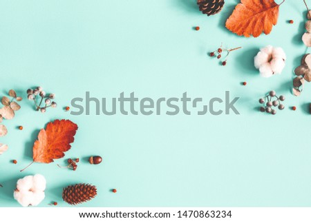 Autumn composition. Dried leaves, cotton flowers on pastel blue background. Autumn, fall, winter concept. Flat lay, top view, copy space #1470863234