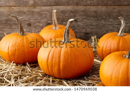 Orange halloween pumpkins on stack of hay or straw in sunny day, fall display #1470969038