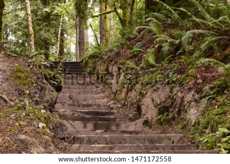 Steps Among Beautiful Lush Forest At Woodard Bay Conservation Area #1471172558