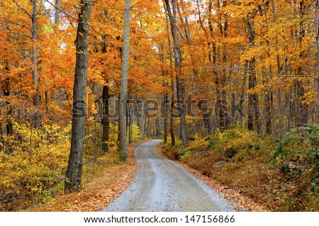 Mountain Road Through Fall Colors #147156866