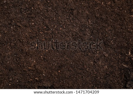 Fresh soil for gardening as background, top view Royalty-Free Stock Photo #1471704209