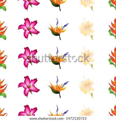 Orange Heliconia. Pink Adenium. Orange Strelitzia. Yellow hibiscus. Vector illustration. Seamless background pattern. Floral botanical flower. Wild leaf wildflower isolated. Exotic tropical hawaiian. #1472120723