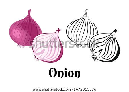 Vector onion vegetable. Whole red onion and slice isolated on a white background. Color illustration and black and white outline. Food image in cartoon simple flat style. Royalty-Free Stock Photo #1472813576