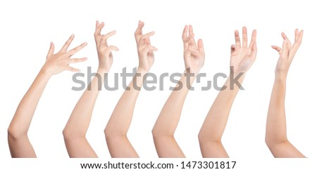 Set of woman hand isolated on white background. Royalty-Free Stock Photo #1473301817