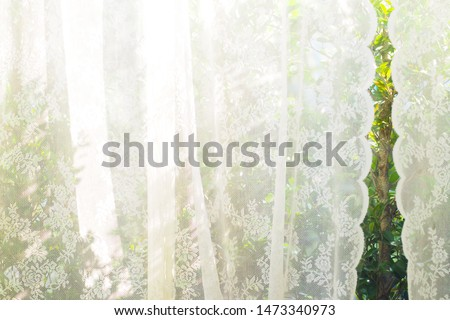 Transparent curtain on window. Curtain background light through the curtain . white curtain with window view / tree garden background.The Morning lights go through the lace curtains. Feeling home . #1473340973