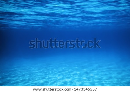 Underwater Blue Ocean, Sandy sea bottom Underwater background  #1473345557