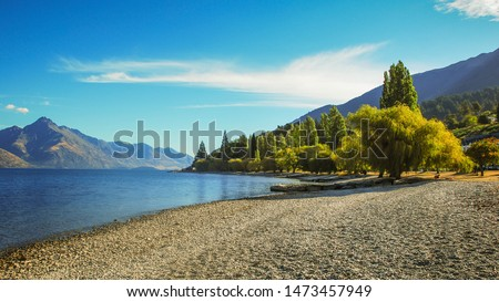 Beautiful peaceful summer scenery on lakeside with reflection and tree branches at foreground #1473457949
