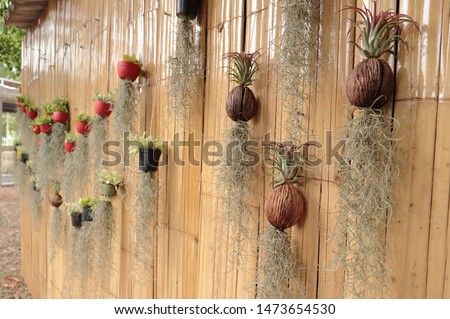 Tree decorated on bamboo walls #1473654530