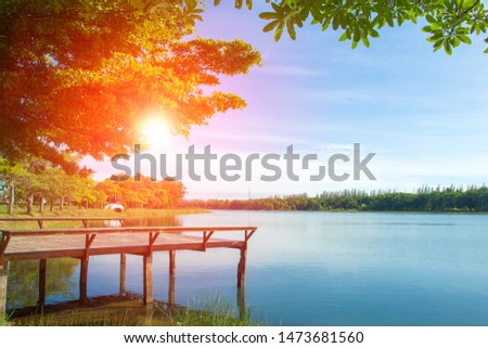 Waterfront pavilion, Waterfront pavilion and sunset,Waterfront pavilion and Terminalia ivorensis Chev,Waterfront pavilion  in the lake.  #1473681560