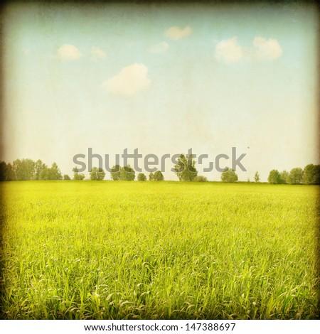 Vintage image of summer field. #147388697