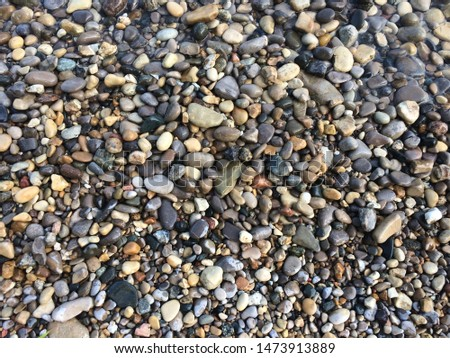colorful pebbles on the beach #1473913889