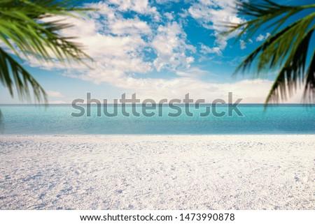 Salda lake with white sand and green water With Palm leaves on the scene like Maldives. Yesilova Burdur Turkey. #1473990878