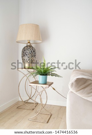 Elegant living room corner with a lamp and an artificial plant in two decorative tables. Bright minimalist decor. Interior design.  Inspirational living room ideas, #1474416536