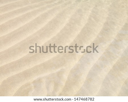 texture fine sand beach in sunny day #147468782