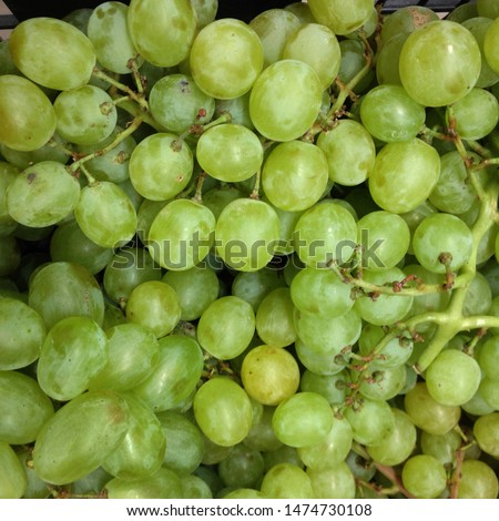 Macro Photo food green grapes berries. Texture pattern background of round green grapes berries. Image fresh berries fruit white  grapes on branch #1474730108