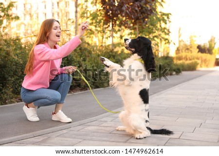 Young woman playing with English Springer Spaniel dog outdoors #1474962614