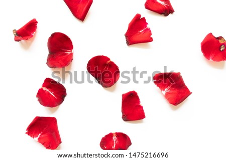 Rose petals isolated on white background #1475216696