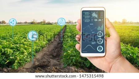 Farmer's holds a smartphone on a background of a field with a potato plantations. Agricultural startup. Automation and crop quality improvement. High technology, innovation. Scientific research. #1475315498