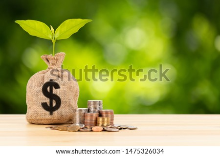 Money sack and leaves growing and coin stack on green tree background, saving concept #1475326034