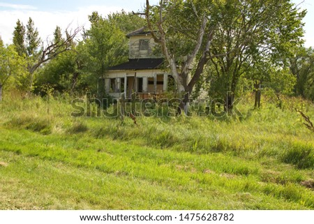 A torn apart old abandoned house peeking through the trees and overgrown lot. #1475628782
