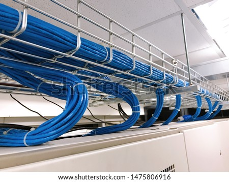 Large group of UTP cables, Ethernet cables in cable tray. Royalty-Free Stock Photo #1475806916