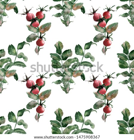 Watercolor seamless patterns with ripe bright rosehip #1475908367