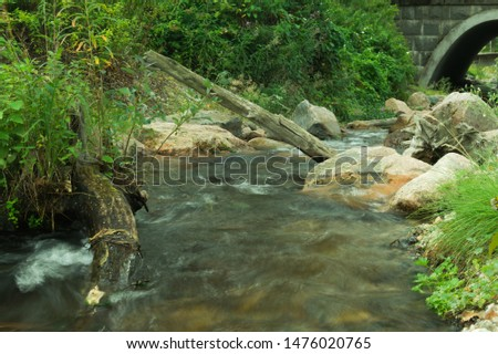 Rocky creek in the forest. river with rocks. dense overgrown forest with flowing stream nature background #1476020765