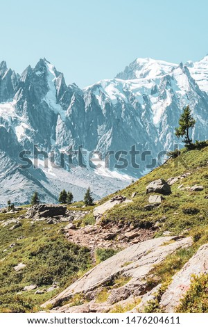 Alpine landscape with snow capped mountains including the highest mountain of Europe Mount Blanc. Late summer near Chamonix, France. French Alps in summer. Adventure, mountain hiking. Vertical photo #1476204611