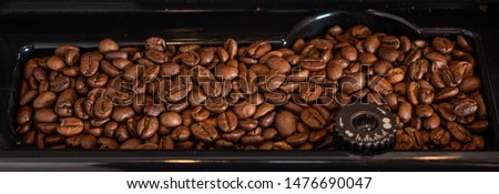 Coffe beans in a grinder. ideal for illustrating an article or any commercial work about organic coffee, cuisine, kitchens, coffee machines and any coffee culture related needs.