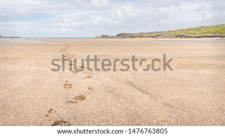 Glencolmcille / Glencolumbkille Beach, County Donegal, Ireland #1476763805