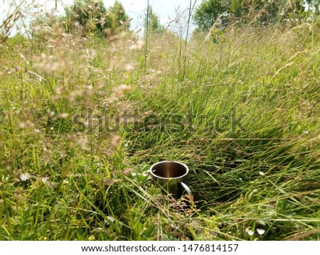 Cup. Grass. Mug on grass. Tourism pictures. New day start. Summer view. Enjoy summer. Sunny summer. Enjoy life. Beauty in simple. Sunny picture. Simple happiness. Good morning. Feel free.