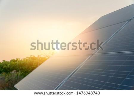green energy concept solar panels farm  #1476948740