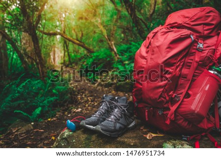 Red backpack and hiking gear set placed on rock in rainforest of Tasmania, Australia. Trekking and camping adventure. #1476951734