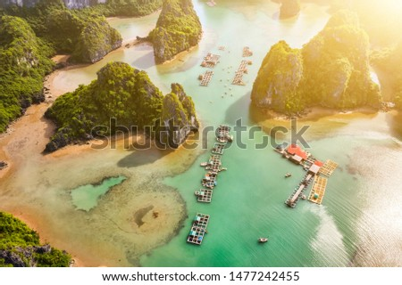Aerial view Vung Vieng floating fishing village and rock island, Halong Bay, Vietnam, Southeast Asia. UNESCO World Heritage Site. Junk boat cruise to Ha Long Bay. Famous destination of Vietnam Royalty-Free Stock Photo #1477242455