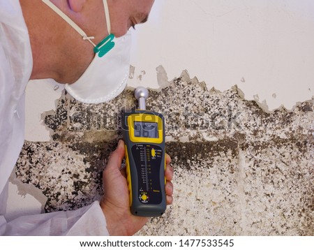 a professional pest control contractor or exterminator in a white safety dress and mask at a mold destroyed wall with a moisture meter check for mold pests and bugs and humidity #1477533545