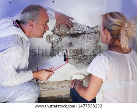 a pest control contractor or exterminator with a blonde female customer at a mold destroyed wall and explain her the problem and the plan whats to do against mold pests and bugs for hygienic #1477538252