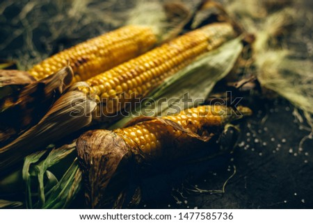 fried corn on a dark background #1477585736