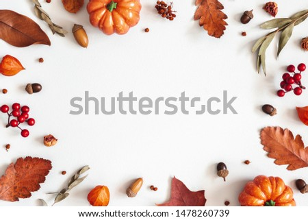 Autumn composition. Dried leaves, pumpkins, flowers, rowan berries on white background. Autumn, fall, halloween, thanksgiving day concept. Flat lay, top view, copy space #1478260739