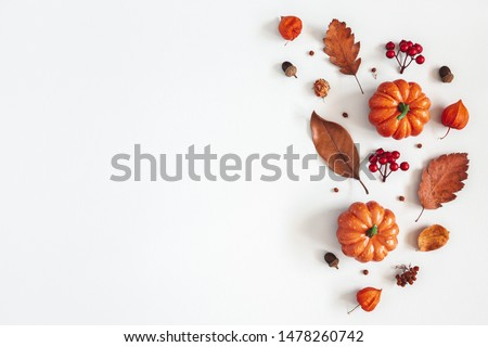 Autumn composition. Dried leaves, pumpkins, flowers, rowan berries on white background. Autumn, fall, halloween, thanksgiving day concept. Flat lay, top view, copy space #1478260742