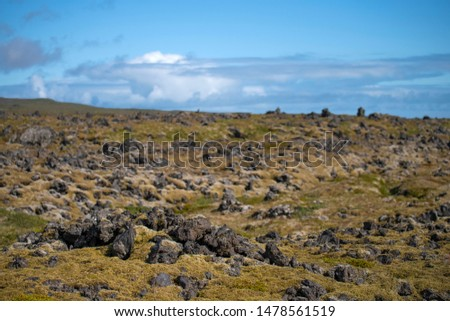 view of Iceland black rocky lava plains, covered by moss,lichens, bilberry and crowberry In the background can be seen the Highland volcanic mountains with ice, sea and glaciers #1478561519