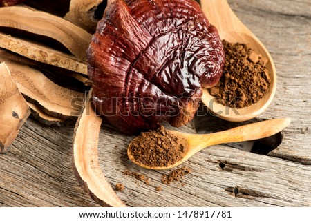 Lingzhi mushroom, Reishi mushroom,powder ,slice and fruity body on natural background. #1478917781