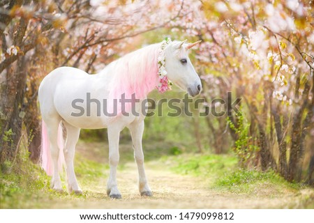 photo of a snow-white unicorn with a pink and white mane and tail in a spring flowering garden, a magical garden. #1479099812