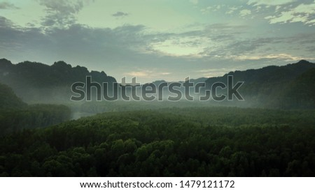 Sunrise in the rainforest. langkawi forest ,drone view #1479121172