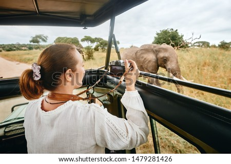 Woman tourist on safari in Africa, traveling by car with an open roof of Kenya and Tanzania, watching elephants in the savannah. #1479281426