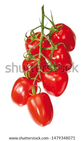 ripe red tomatoes on white background #1479348071