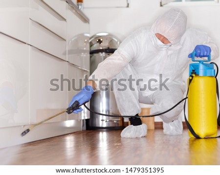 a professional pest control contractor or exterminator at work with chemicals in the kitchen in his typical work wear in his fight against pests bugs and mold. squads on the parquet and spray chemical #1479351395