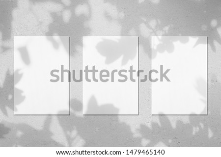 Three empty white vertical rectangle poster mockups with soft shadows on neutral light grey concrete wall background. Flat lay, top view #1479465140