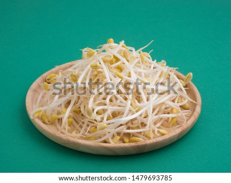"""A sprout made from soybeans named """"Mamemoyashi"""". #1479693785"""